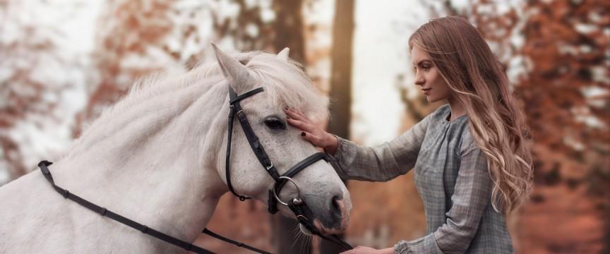 Подарункові сертифікати на прогулянки на конях